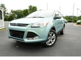 2013 Frosted Glass Metallic Ford Escape SEL 2.0L EcoBoost #82390010