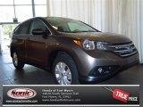 2013 Urban Titanium Metallic Honda CR-V EX #82446402