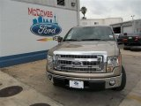 2013 Pale Adobe Metallic Ford F150 XLT SuperCrew #82446473