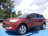 2014 Sunset Ford Escape SE 2.0L EcoBoost #82446530