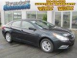 2013 Pacific Blue Pearl Hyundai Sonata GLS #82446342