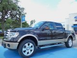 2013 Kodiak Brown Metallic Ford F150 Lariat SuperCrew 4x4 #82500466