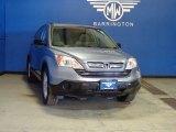 2009 Glacier Blue Metallic Honda CR-V EX 4WD #82500323