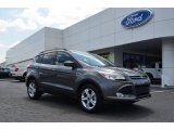 2014 Sterling Gray Ford Escape SE 1.6L EcoBoost #82553923