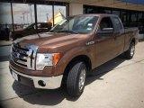 2011 Golden Bronze Metallic Ford F150 XLT SuperCab #82613986