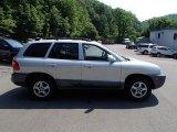 2004 Pewter Hyundai Santa Fe GLS 4WD #82638487