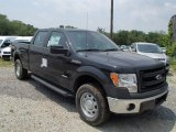 2013 Ford F150 XL SuperCrew 4x4 Data, Info and Specs