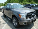 2013 Ford F150 STX Regular Cab 4x4