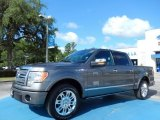 2010 Sterling Grey Metallic Ford F150 Platinum SuperCrew #82672675