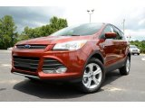 2014 Sunset Ford Escape SE 2.0L EcoBoost 4WD #82732239