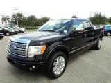 2012 Ford F150 Platinum SuperCrew Data, Info and Specs