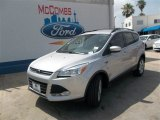 2013 Ingot Silver Metallic Ford Escape SE 1.6L EcoBoost #82731833