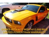 2007 Grabber Orange Ford Mustang GT Premium Coupe #82790934