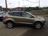 2013 Ginger Ale Metallic Ford Escape SEL 1.6L EcoBoost 4WD #82790532