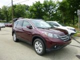 2013 Basque Red Pearl II Honda CR-V EX-L AWD #82846508