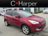 2013 Ruby Red Metallic Ford Escape SE 1.6L EcoBoost 4WD #82845984
