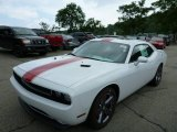 2013 Bright White Dodge Challenger SXT Plus #82895859