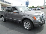 2010 Sterling Grey Metallic Ford F150 Platinum SuperCrew #82895710
