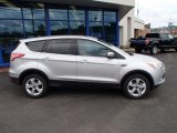 2013 Ingot Silver Metallic Ford Escape SE 1.6L EcoBoost #82925108