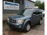 2010 Steel Blue Metallic Ford Escape XLT V6 4WD #82925182