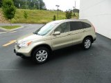 2009 Honda CR-V Borrego Beige Metallic