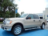 2013 Pale Adobe Metallic Ford F150 XLT SuperCrew #82969688