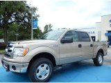 2013 Pale Adobe Metallic Ford F150 XLT SuperCrew 4x4 #82969682