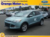 2013 Frosted Glass Metallic Ford Escape SE 1.6L EcoBoost 4WD #82969822