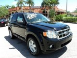 2009 Black Ford Escape XLT V6 #83017185