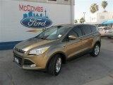 2014 Ginger Ale Ford Escape SE 1.6L EcoBoost #83017145