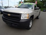 2009 Silver Birch Metallic Chevrolet Silverado 1500 Regular Cab 4x4 #83070606