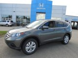 2013 Polished Metal Metallic Honda CR-V EX AWD #83141157