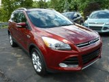 2014 Sunset Ford Escape Titanium 1.6L EcoBoost 4WD #83141006