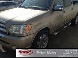 2005 Desert Sand Mica Toyota Tundra SR5 Double Cab #83162174