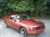 2006 Redfire Metallic Ford Mustang V6 Premium Coupe #83206454