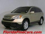 2007 Borrego Beige Metallic Honda CR-V EX-L #829656