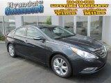 2013 Pacific Blue Pearl Hyundai Sonata Limited #83205706