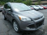 2014 Sterling Gray Ford Escape Titanium 2.0L EcoBoost 4WD #83263272