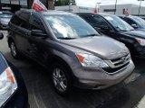 2010 Urban Titanium Metallic Honda CR-V EX AWD #83316946