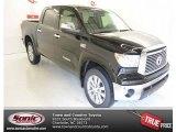 2013 Black Toyota Tundra Platinum CrewMax 4x4 #83378423