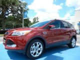 2014 Sunset Ford Escape Titanium 2.0L EcoBoost #83377526
