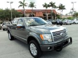 2010 Sterling Grey Metallic Ford F150 Platinum SuperCrew 4x4 #83377503
