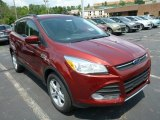 2014 Sunset Ford Escape SE 1.6L EcoBoost 4WD #83377603