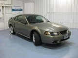 2001 Mineral Grey Metallic Ford Mustang Cobra Coupe #83377394