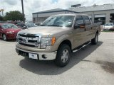 2013 Pale Adobe Metallic Ford F150 XLT SuperCrew 4x4 #83469400