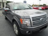 2010 Sterling Grey Metallic Ford F150 Platinum SuperCrew #83469407