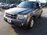 2011 Sterling Grey Metallic Ford Escape XLT #83469325