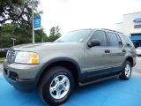 2003 Mineral Grey Metallic Ford Explorer XLT #83484023