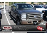 2005 Mineral Grey Metallic Ford Excursion Limited 4X4 #83483819