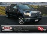 2013 Black Toyota Tundra Platinum CrewMax 4x4 #83483816